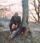 caccia muflone
